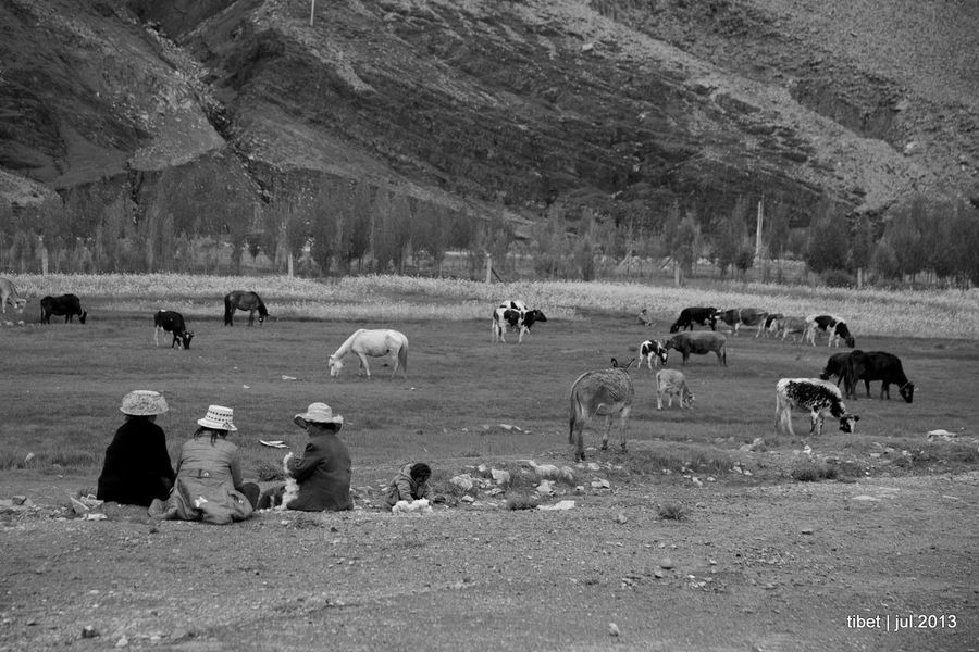 China Mainland Monochrome Outdoors Tibet Tibet Life Tibetan Buddhism