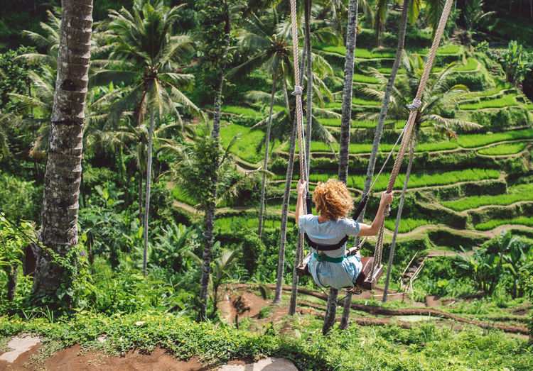 Rear view of woman swinging over rice terraces