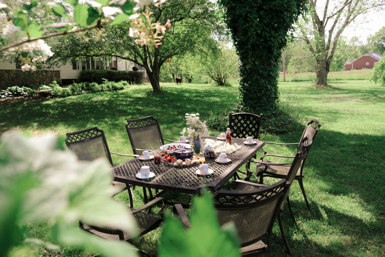 Chairs and table in yard
