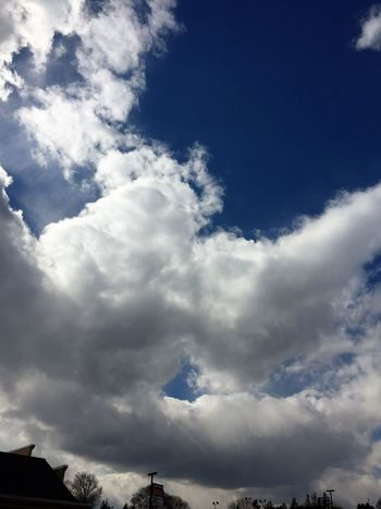 Clouds in the sky Beauty In Nature Blue Cloud - Sky Day Low Angle View Nature No People Outdoors Scenics Sky Tranquility