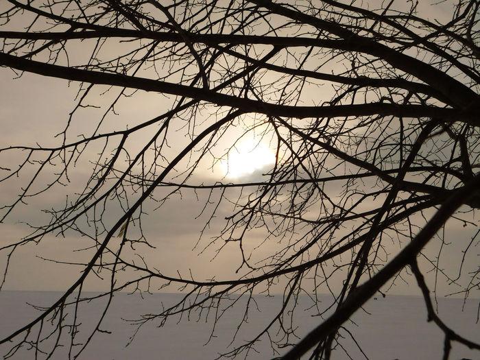 Lake Nipi Nature Northern Ireland Outdoors Sunset Sunset Over Lake Winter