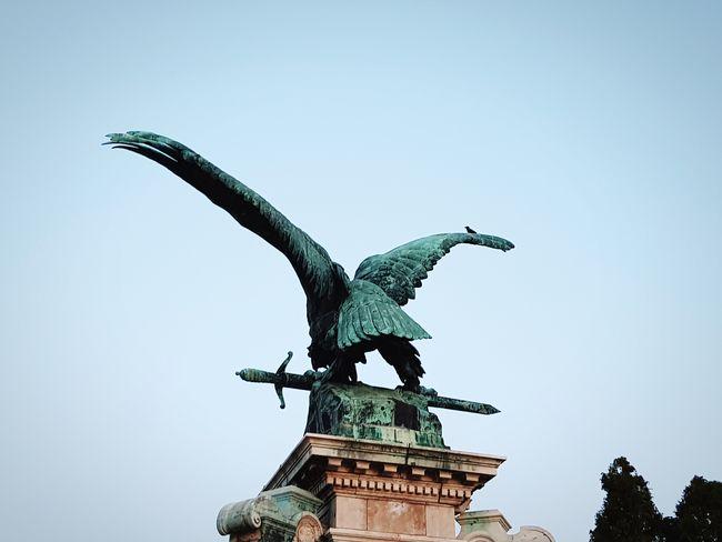 City Bird Spread Wings Statue Sculpture Clear Sky City Gate History Eagle - Bird Sky Bronze - Alloy Bird Of Prey Monument Hawk - Bird Eagle Bald Eagle