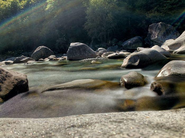 Rocks on shore against trees