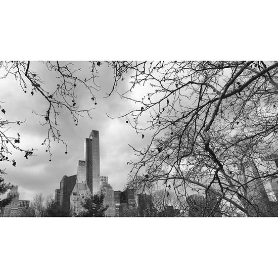 CentralPark Poetswalk NYC Manhattan Newyorkcity Instanyc Architecture Archidaily Architectureporn Instalike Photooftheday Nbc4ny Iloveny Skyscraper Featuremeinstagood Travelgram Travelling Nofilter Blackandwhite MarriottEssexHouse EssexHouse Luxuryhotel Artdeco
