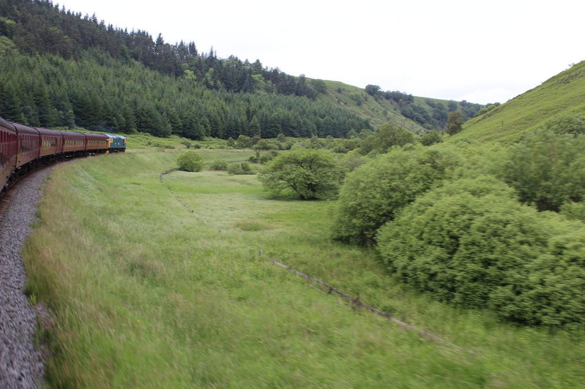 North Yorkshire Moors Railway, Newtondale, North Yorkshire Day Field Grass Green Green Color Hill Landscape Lush Foliage No People Non-urban Scene North Yorkshire Moors Railway Outdoors Remote Rural Scene Train Train Journey Tranquil Scene Tranquility Tree Traveling Home For The Holidays
