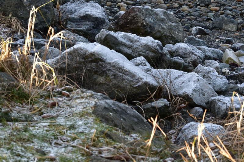 Rocks Rocky Beach Close Up Rocks And Pebbles Dry Plants Landscape Landscape_Collection Landscape_photography Nature Photography Nature_collection Nature