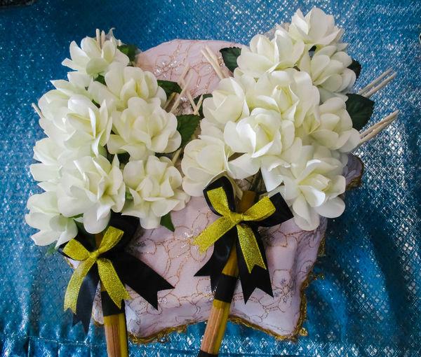 funeral wood flower Sandalwood Flower Sandalwood ดอกไม้จันท์ Funeral Wood Flower Flower Head Flower Water Close-up
