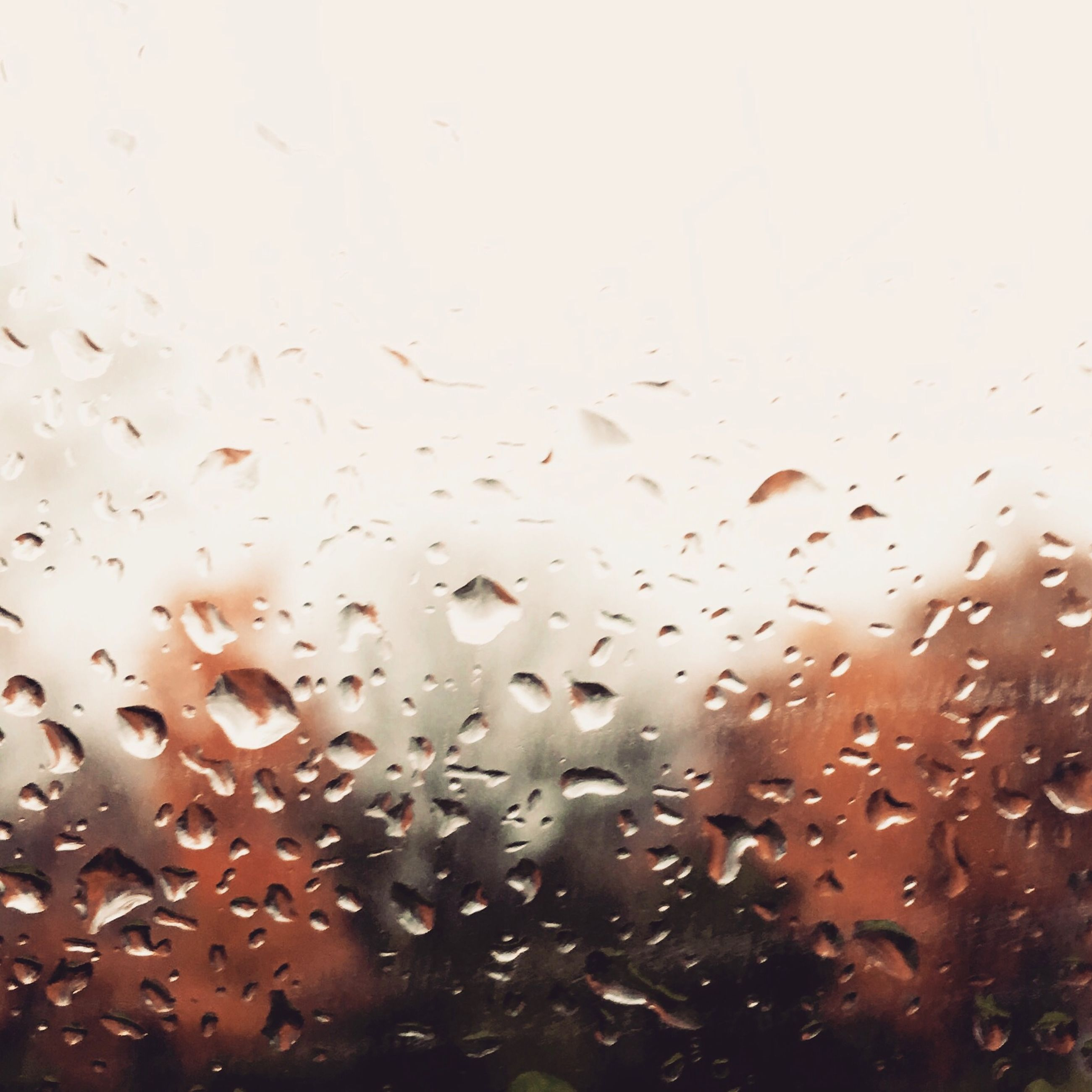 drop, wet, window, rain, water, indoors, backgrounds, weather, raindrop, full frame, transparent, glass - material, season, close-up, sky, glass, focus on foreground, no people, droplet, day
