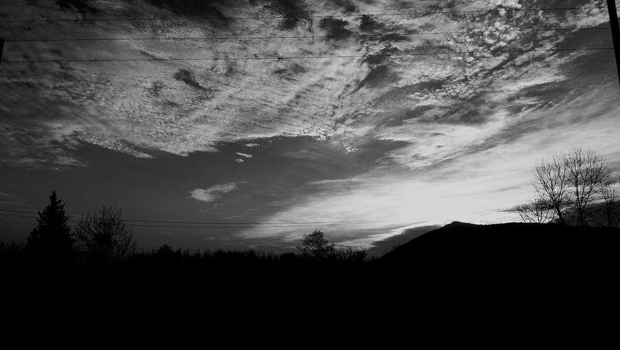 Sunrise Black