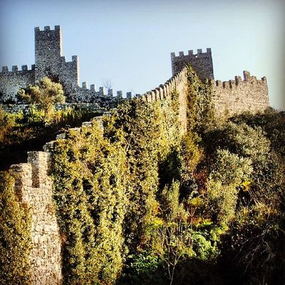 #montemorovelho #coimbra #igers #igers_coimbra #igersportugal #portugaligers #castelosdeportugal #castelodemontemor #iphone5 #iphonesia #iphoneonly #iphonephotography #instagood #instagram #instalove #instamood #instadaily #instagramhub #photography #phot Portugaligers Igersportugal Photography Castelosdeportugal Iphoneonly Montemorovelho Photooftheday Iphonesia Iphonephotography Instagram Castelodemontemor IPhone5 Igers_coimbra Coimbra Instamood Igers Instagood Instagramhub Instadaily Pictureoftheday Instalove