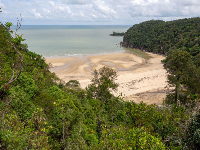 Tropical Rainforest Bako Bako National Park Sarawak Borneo Malaysia Nature Outdoors No People Sea Green Color Tranquility Scenics - Nature Tree Beach Beauty In Nature Tropical Rainforest