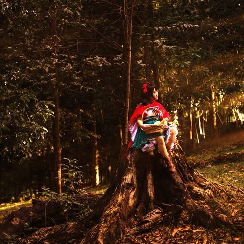 Little Red Riding Hood Little Red Riding Hood Tree Tree Trunk Non-urban Scene Tranquility Nature WoodLand Day Scenics Outdoors Branch Little Girl Cosplay Portrait Morning Light Rays Photography Asdgraphy Girl