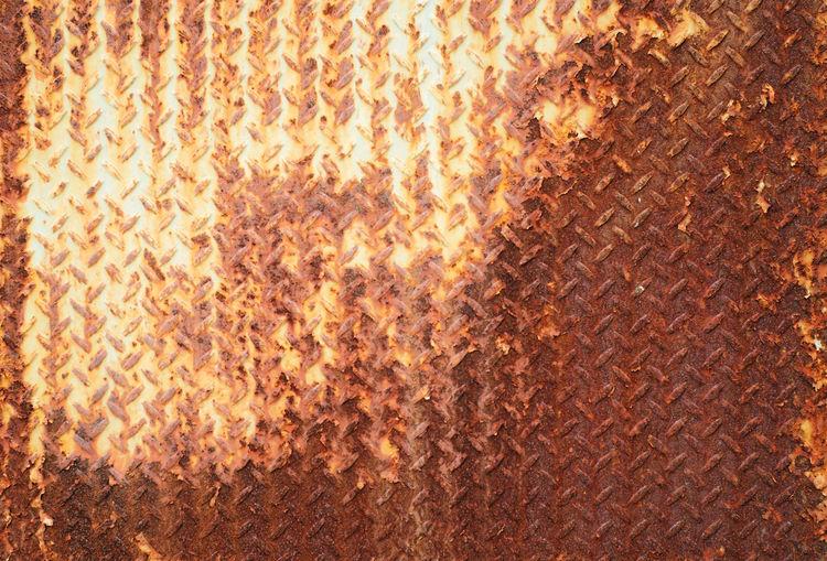 Full frame shot of orange cat