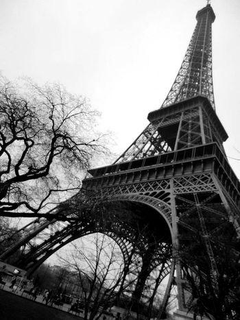 Eiffeltower Eiffel Tower Paris EyeEm Best Shots EyeEm Best Shots - Black + White Winter Tree Branches Sky Steel Architecture Black And White Blackandwhite