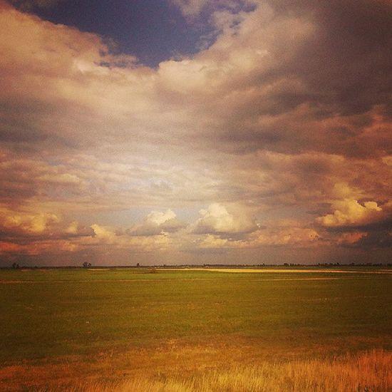 A Búzafront. Landscape Nature Clouds Puszta