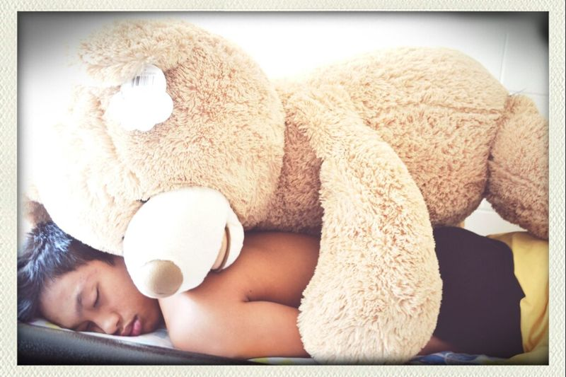 Woke Up Today With This Big Fat Bear On Me. Yup, A Pretty Good Morning. Lol