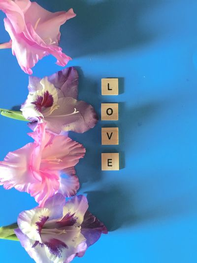 LOVE , words in