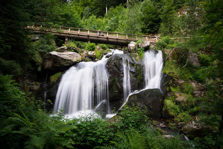 Blackforest Triberg Nature Outdoor Green Wanderlust Water Waterfall Tree Motion Long Exposure Forest Green Color Flowing Water Power In Nature Falling Water Countryside Footbridge Stream The Traveler - 2018 EyeEm Awards The Great Outdoors - 2018 EyeEm Awards