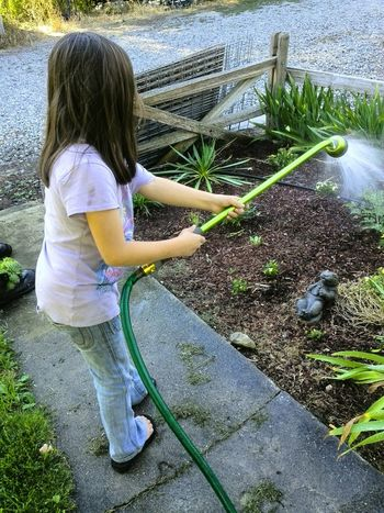 Gammas Helper Child Girl Girl Power Water Outdoors Watering Botany Plants And Garden Garden Photography Outdoor Photography Grand Daughter Daytime Family Summer Outdoors Activities Casual Clothing Brown Hair Brunette Girl  Plants And Flowers Children Washington State My Point Of View People And Places My Year My View