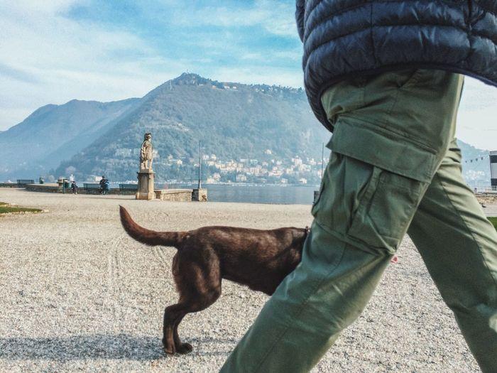 Magic dog. AMPt - Street NEM Street Travel Photography