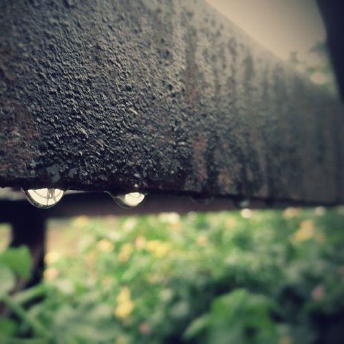 Clicks Ironbar Monsoonshowers Drop