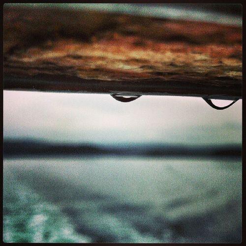 No tot és verd, a Escocia Scotland . Amb Pluja Rain per primer cop... per mar sea, al ferry d'Oban a la Illa de Mull viatgers2013