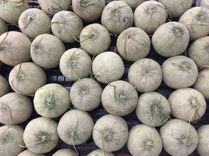 Rock Melon Rock