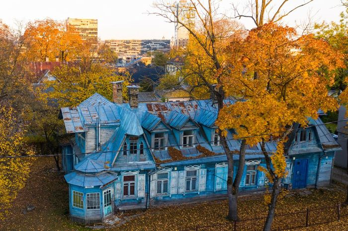 Blue vs yellow Built Structure Architecture Building Exterior Tree Plant Building No People Autumn Day Nature Change Outdoors Growth Residential District City Window House Sunlight Orange Color