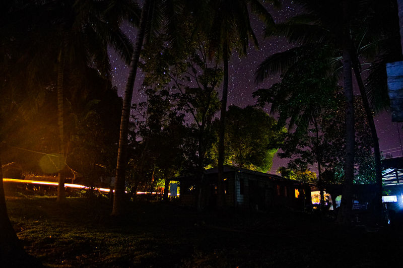 Silhouette trees by illuminated building against sky at night