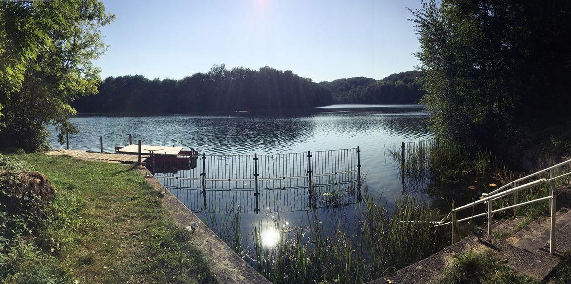 Idyllic Idyllic Scenery Lakeside Untouched Nature Jetty Morning Light Lake Lakeview No People