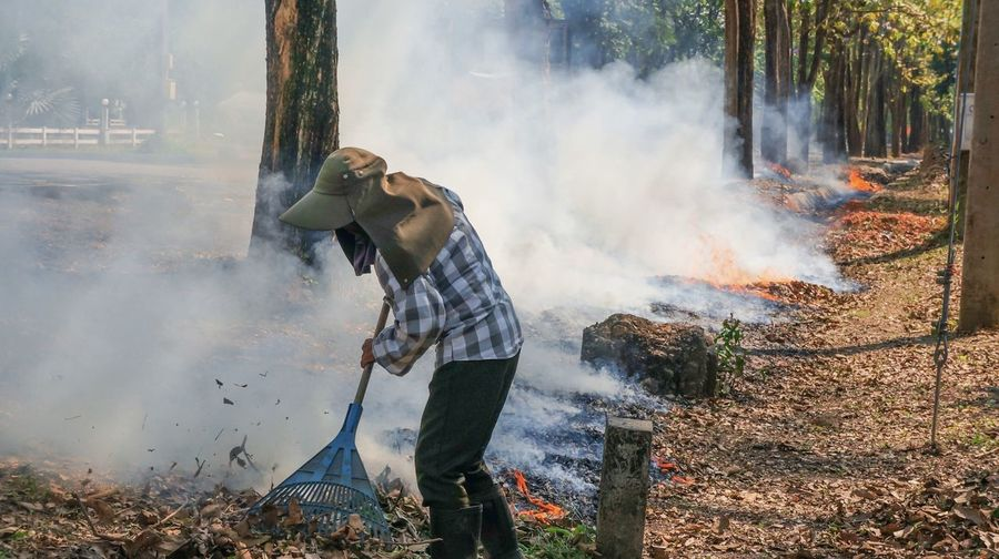 Man sweeping in forest