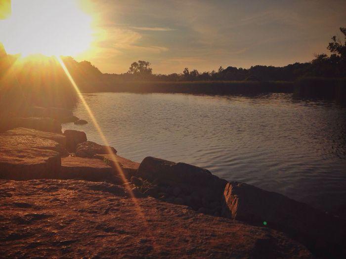 Sunset Summer Lake Beautiful