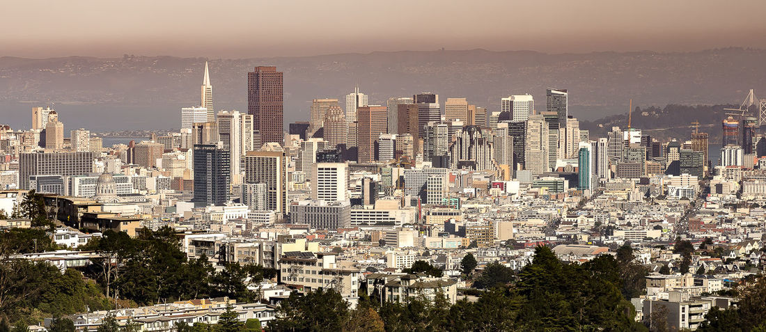 View of San Francisco from Twin Peaks California Modern Architecture San Francisco Apartment Architecture Building Building Exterior Built Structure City Cityscape Crowd Crowded Donwtown Famous Place High Angle View Landscape Modern Nature Office Building Exterior Outdoors Residential District Sky Skyscraper Travel Destinations