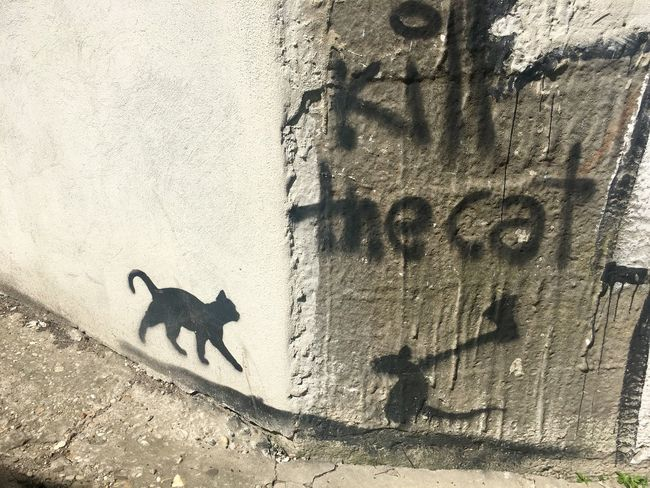 Graffiti Creativity Art And Craft Day No People Nature Shadow High Angle View