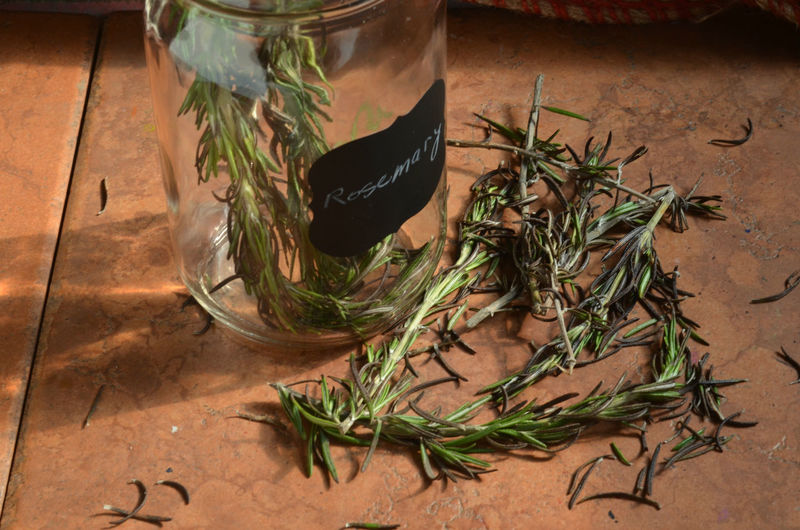 Close-up of rosemary herb in jar and table