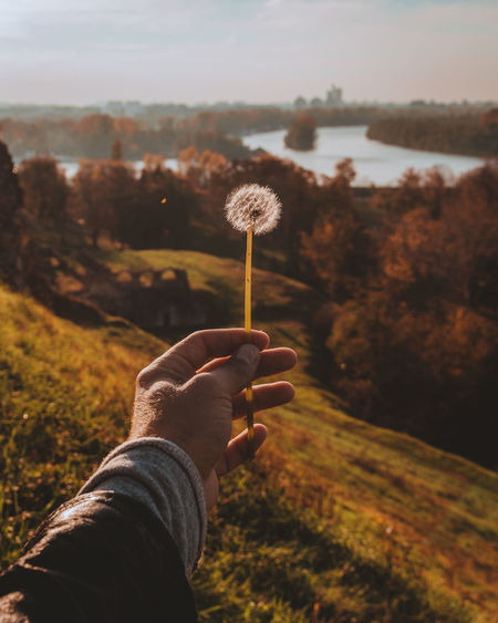 Close-up of person holding dandelion against sky