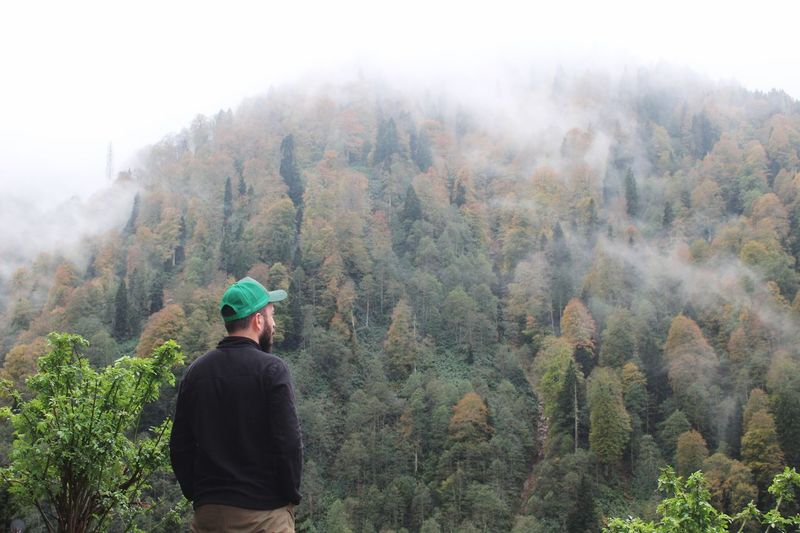 Ayder Yaylası Tree Plant Land Rear View One Person Lifestyles Fog Nature Mountain Pine Tree Real People Scenics - Nature First Eyeem Photo