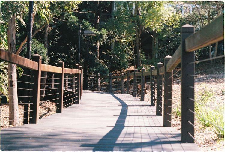 Walking pathway