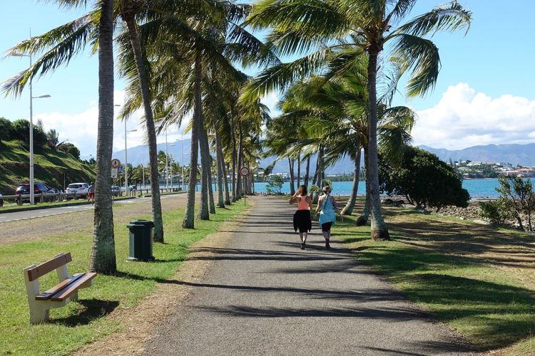 Location: Anse Vata promenade in Nouméa, New Caledonia Island Life New Caledonia Noumea Anse Vata EyeEm Nature Lover EyeEm Best Shots EyeEmNewHere EyeEmBestPics Summer Summer Scene Summer Vibes Summermood Tree Plant Real People Sunlight Nature Lifestyles Shadow The Way Forward Women Leisure Activity Sky Two People Walking Adult
