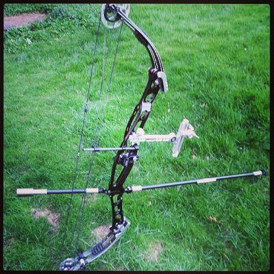Bågskytte Archery Hoyt Beiter Beestinger