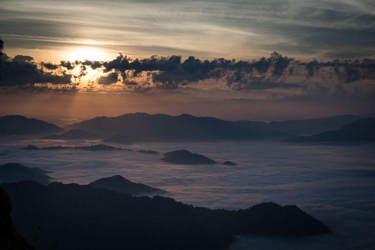 Nature - Misty