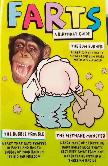 Flammable Flammable Gas Birthday Fart! LOL Chimpanzees Check This Out Taking Photos Half Animal, Half Human Half Human, Half Animal Chimpanzee Chimp Human Representation Animal Representation Animal Themes Methane Methane Gas MethaneGas Bum Bums Smelly Bad Smell Fart Farting Farts Smell Birthday Card Humor Western Script Text