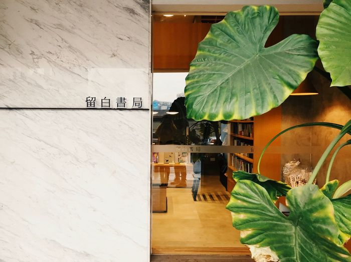 Window Shop Store Bookstore Architecture Text Built Structure Building Exterior Plant Wall Art And Craft
