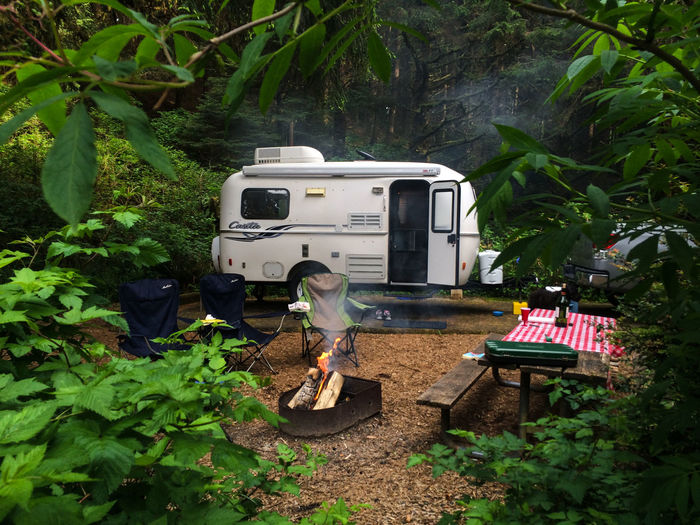 Motor Home And Campfire Amidst Trees At Forest