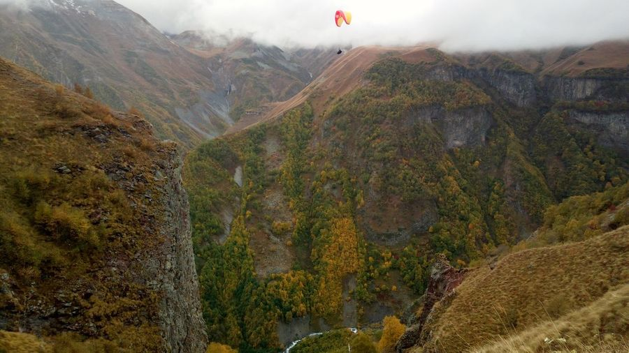 Hot Air Balloon Tree Mountain Flying Fog Forest Fire Tea Crop Paragliding Sky Mountain Range