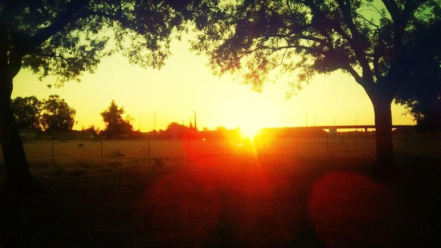 Sunset Taking Photos Street Photography Sun_ Collection