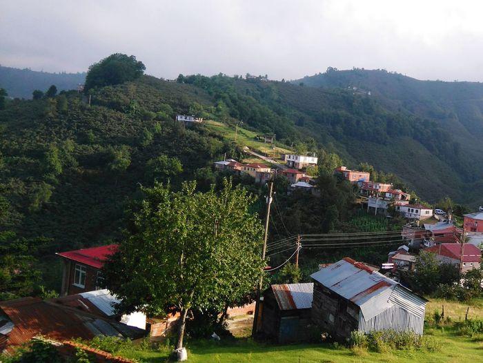 Güneyköy Green