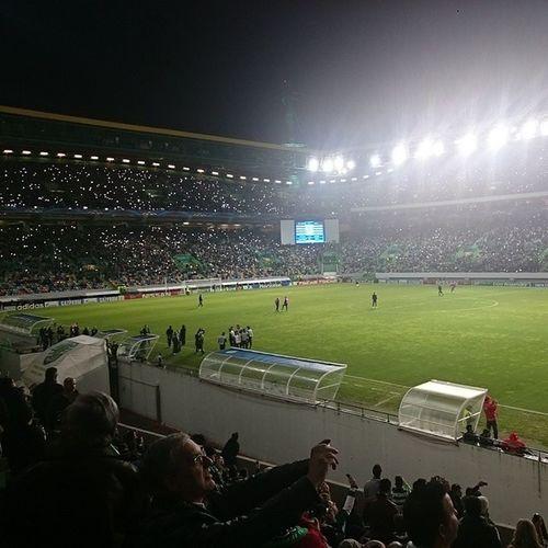 Os lampiões vieram sabotar isto, mas há esperança Alvalade SemLuz Sporting Maribor 2 -1