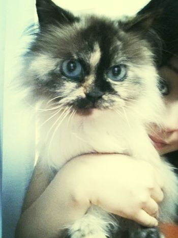 my princesss....