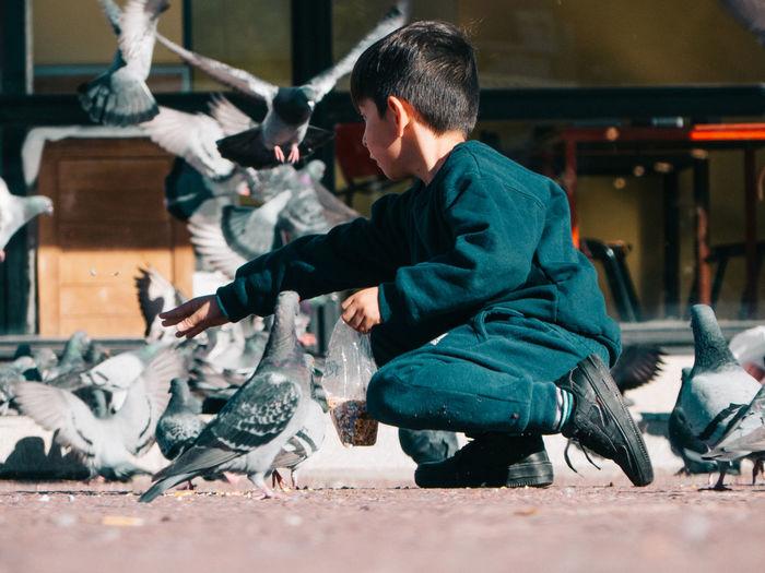 Full length of man feeding pigeons